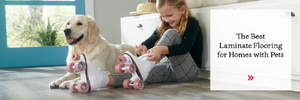 Choosing the Best Laminate Floor for Dog Owners