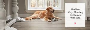 What Is the Best Pet-Friendly Vinyl Floor?