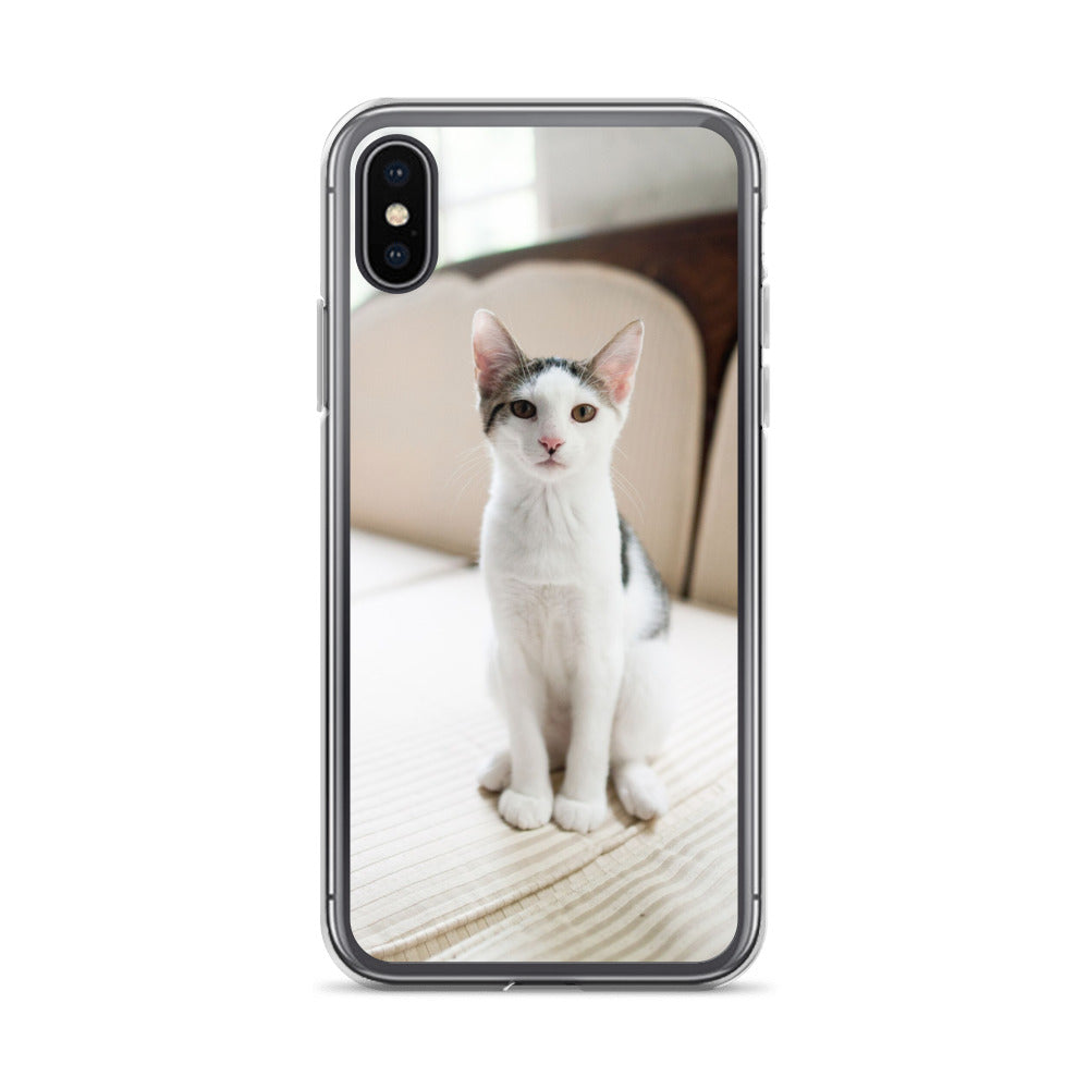 Adorable Cat iPhone Case For All iPhone Devices