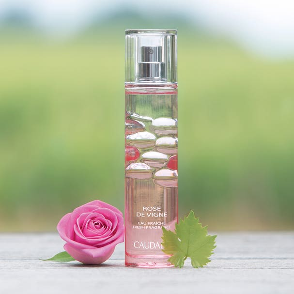 Rose De Vigne Fresh Fragrance Starr Beauty
