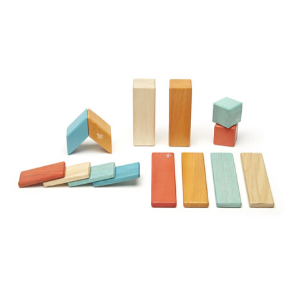 14 Piece Magnetic Wooden Block Set-Tegu-Shop at Nook