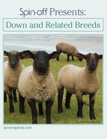 Spin-Off Presents: Down and Related Breeds eBookImage