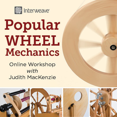 Popular Wheel Mechanics Online WorkshopImage