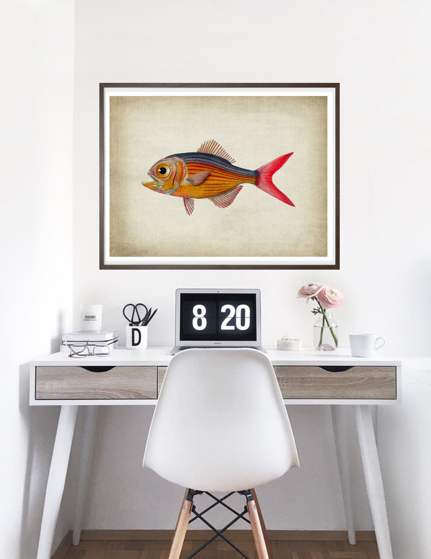 Fish 5 - Blue Shaker - Poster Affiche -