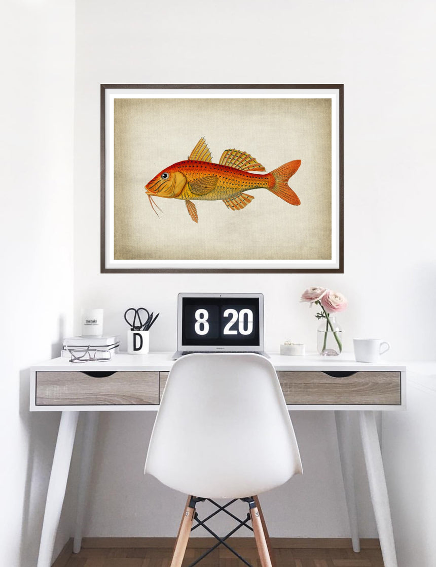Fish 6 - Blue Shaker - Poster Affiche -