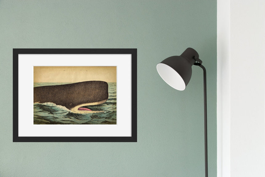 Whale Head - Blue Shaker - Poster Affiche -