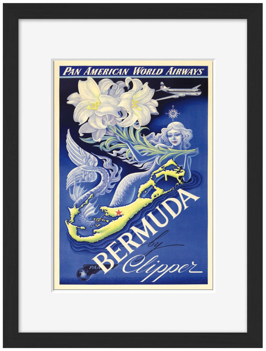Pan Am Bermuda - BLUE SHAKER