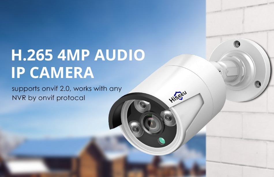 H.265 Audio Security Camera 4MP - LiquidDiffuser