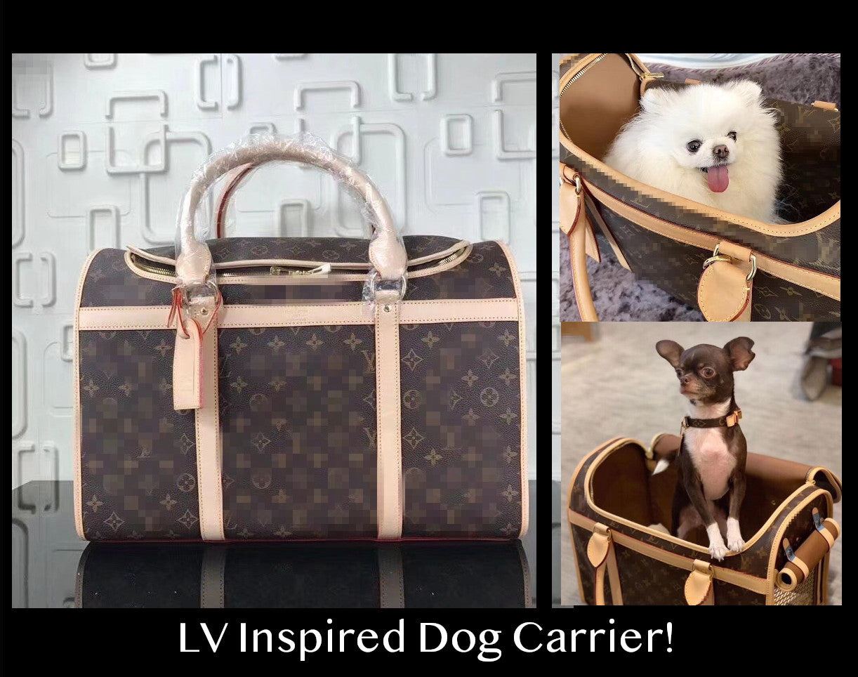 Designer dog clothes include Louis Vuitton carriers