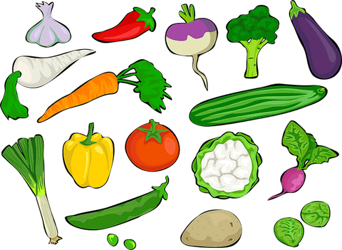 Simple illustration of a variety of fresh vegetables.