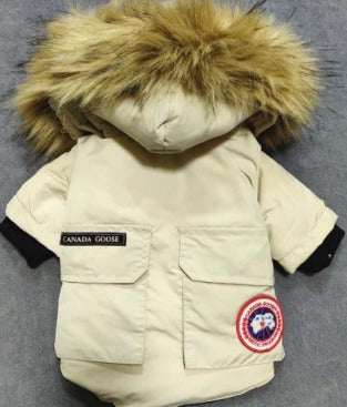 Canada Goose Winter coat with Faux Fur Collar