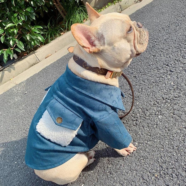 Louis Vuitton Inspired  Denim Dog Coat