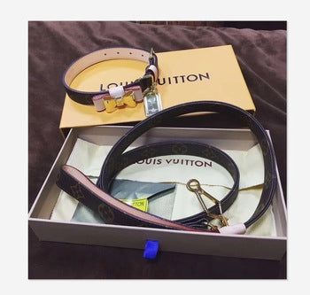 Luxury Louis Vuitton inspired Bow Collar & Leash Set