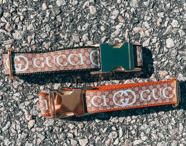 High Fashion Gucci Inspired Designer Dog Collar