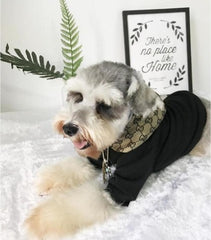 Gucci Inspired Dog Sweatshirt with Hood