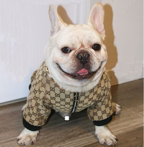 Gucci Inspired Dog Jacket
