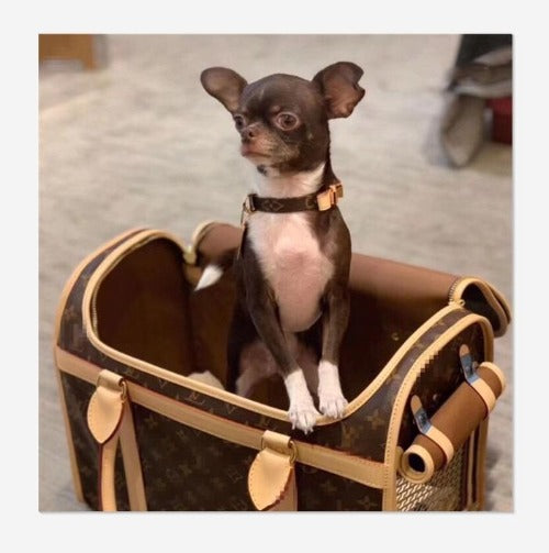 Louis Vuitton Inspired Dog Carrier