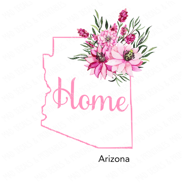 State-Arizona-DD