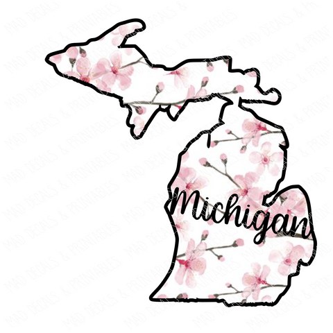 Michigan #1