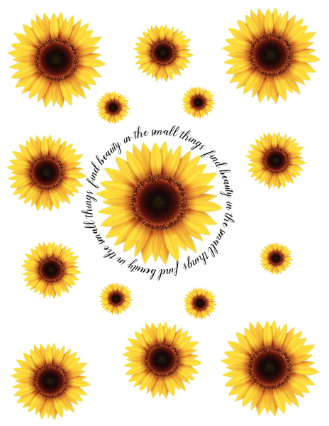 Sunflower-Find Beauty...