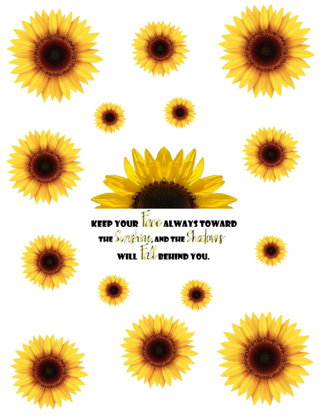 Sunflower-Keep Your Face...