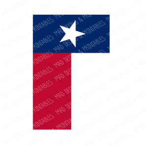 Texas State Flag #3