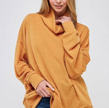 Load image into Gallery viewer, Turtle Neck Cozy Sweater