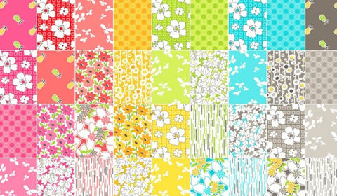 Mojito Charm Pack by Another Point of View for Windham Fabrics - 42, 5 inch Precut Fabric Squares