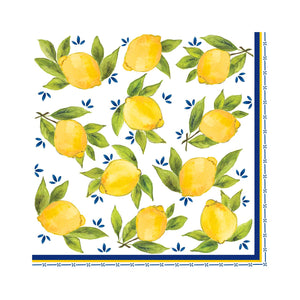 Dinner Napkins/Set of 20