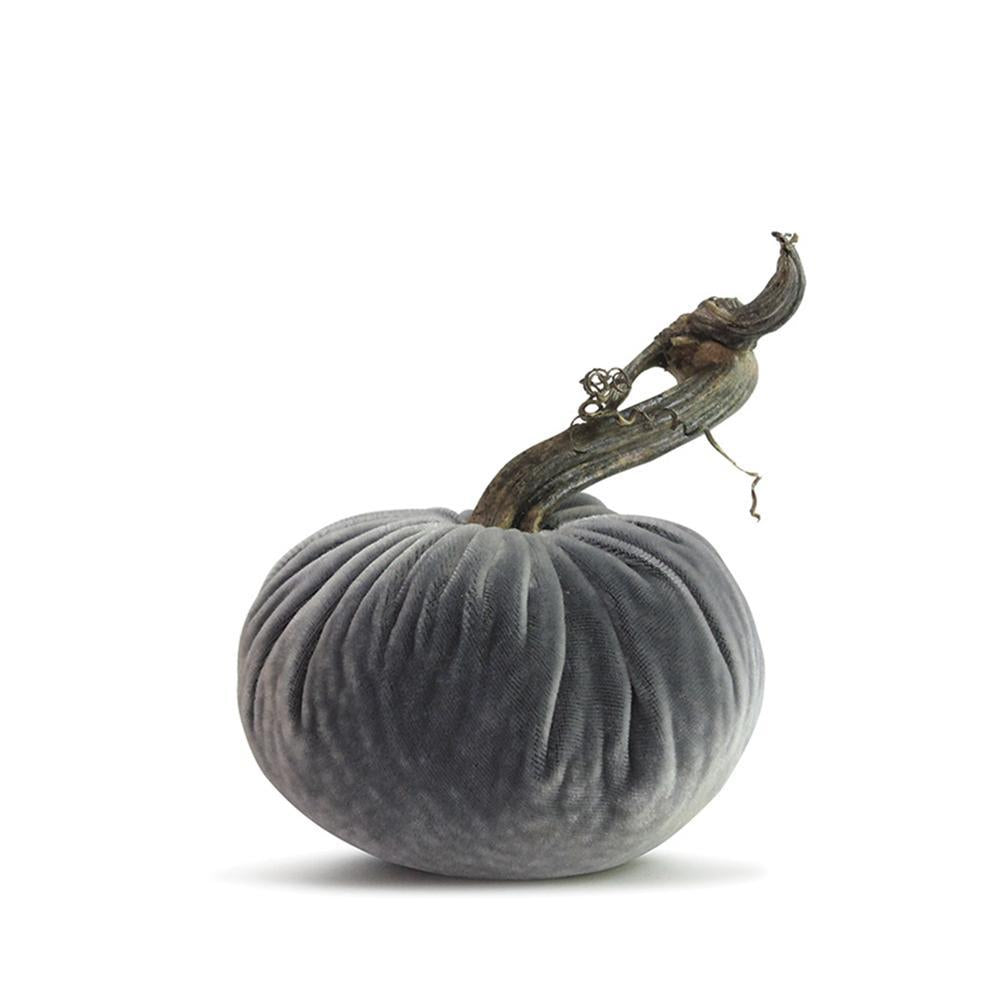 Plush Pumpkins Platinum