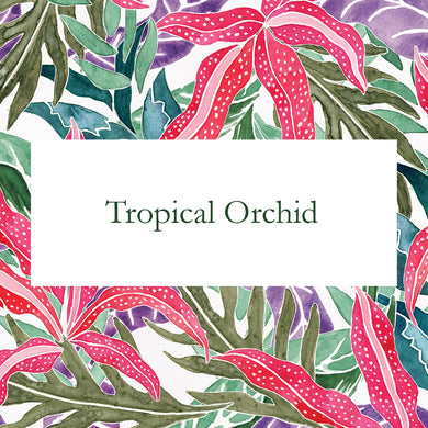 Tropical Orchid