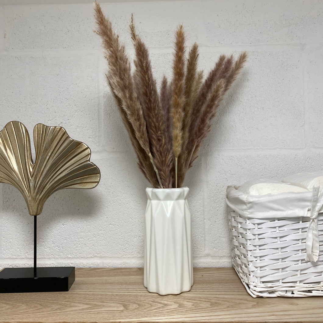 Neutral pampas grass stems