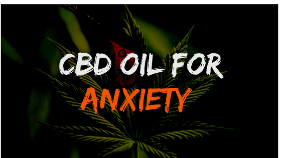 How CBD oil is the best medication for anxiety?