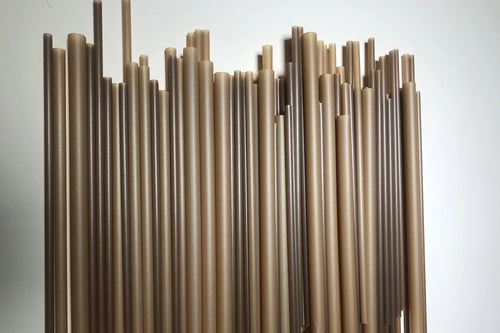 Compostable straws from sugarcane
