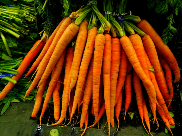 Carrots: Crunchy, Orange, and Loaded With Health Benefits
