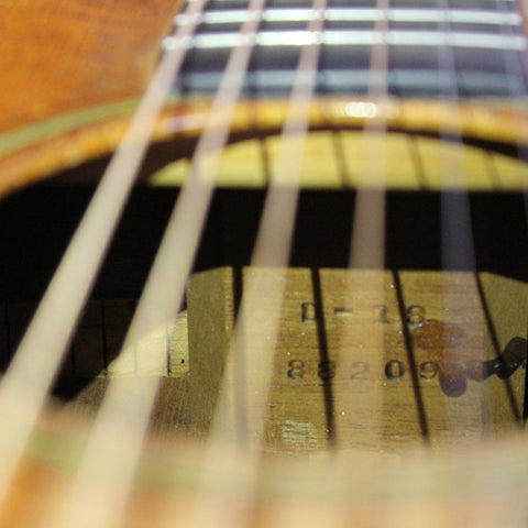 Steel String Guitar