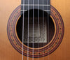 William Falkiner Lutherie 1a