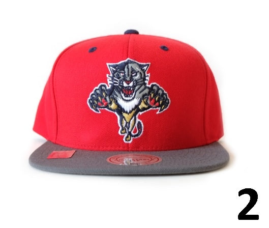 Florida Panthers Snapbacks/Caps