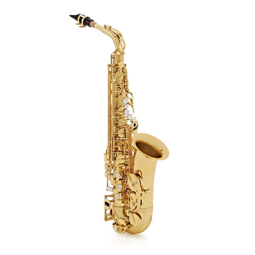 Trevor James Classic II Alto Saxophone Outfit - Gold Lacquer