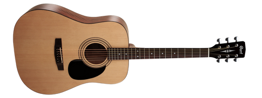 Cort CAP-810 Acoustic Guitar Trailblazer Package - Natural