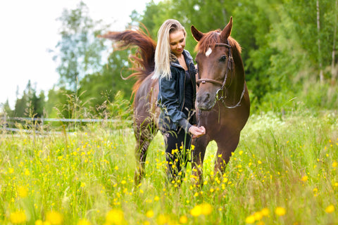 young woman feeding her adult horse standing in a field