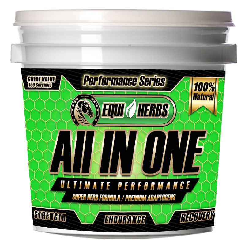 Ultimate horse supplements
