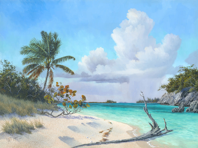 A Beach in Abaco