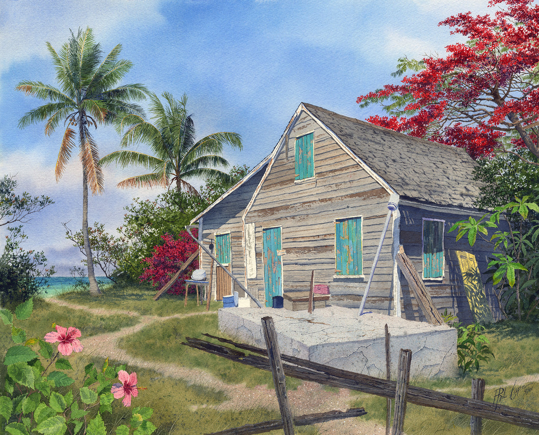 Cottage and Poinciana