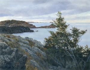 Twillingate Island – View from the Cliffs