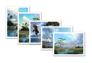 Note Cards:  Florida Birds - Shipping is FREE!
