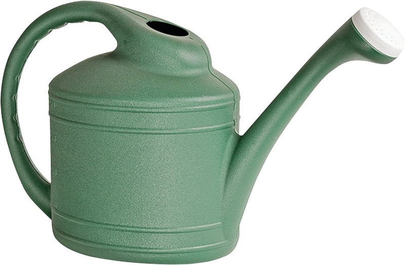 Southern Patio WC8108FE Watering Can, 2 gal Can, Resin, Fern