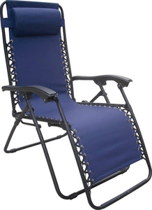 Seasonal Trends Relaxer Chair, 21 In H Arm, 250 Lb Load, 44 In H X 25.59 In W X 63-3/4 In D, Steel