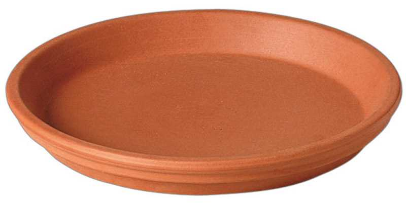 Deroma 1.2 in. H x 10 in. W Clay Traditional Plant Saucer Terracotta