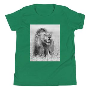 Lion: Youth - A Collection Of Goods